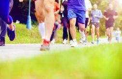 Gruppe von Läufern im Startfeld